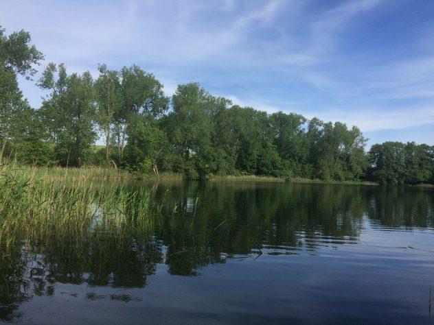 Der mit Bäumen umfriedete klare See in Dreesch liegt wenige Gehminuten vom Hof entfernt